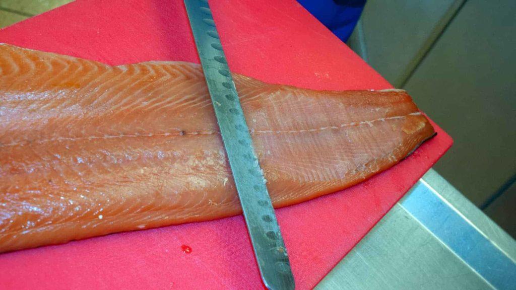 Salmon Header